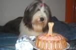 Lujza, first Birthday