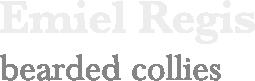 Emiel Regis